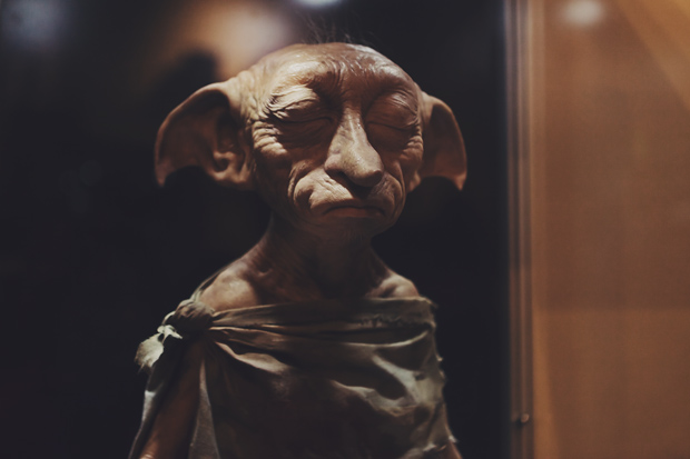 Tricia Gosingtian Harry Potter