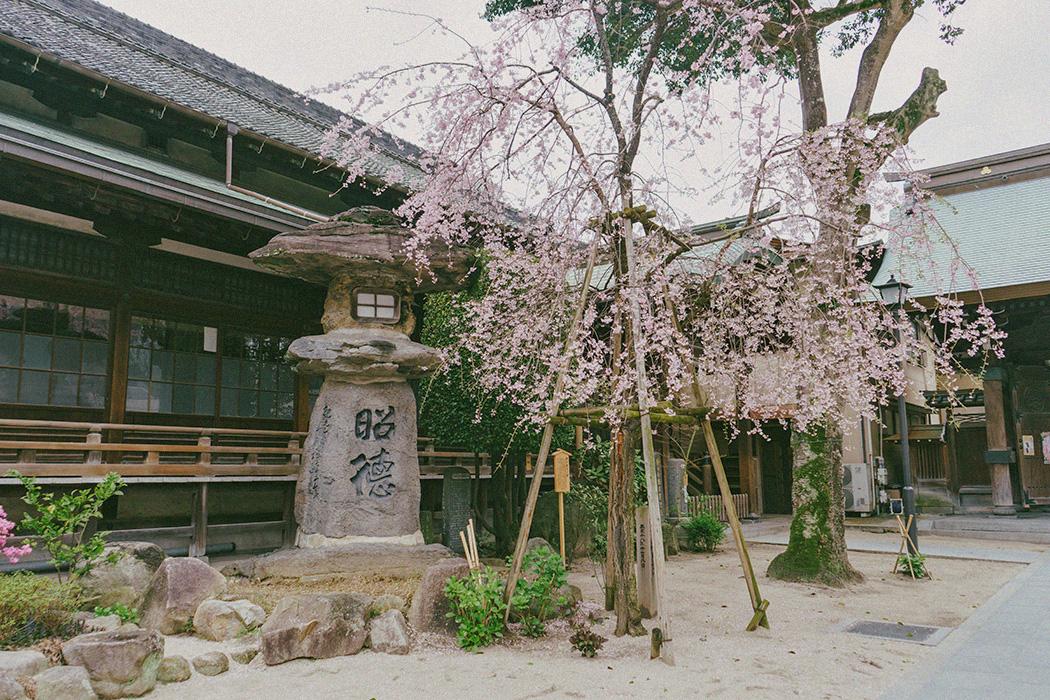 Fukuoka: Mangyo-ji, Kushida-jinja, Canal City - Tricia ...